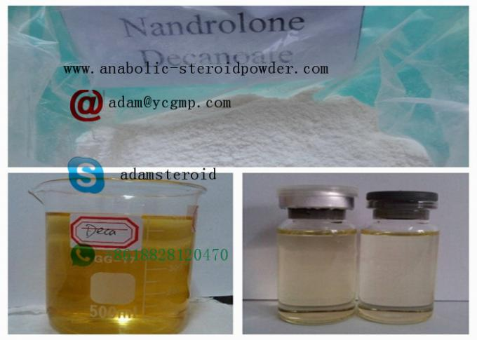 Safety Nandrolone Steroid Nandrolone Deca Durabolin / Legal Steroids For Muscle Mass