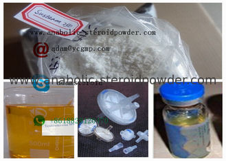 China Mix Powder Testosterone Blend / Sustanon 250 For Legal Anabolic Supplements supplier