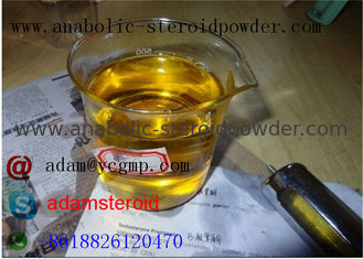 China Safety Nandrolone Steroid Nandrolone Deca Durabolin / Legal Steroids For Muscle Mass  supplier