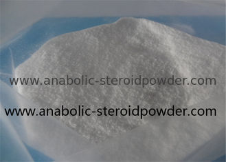 China Benzocaine Local Anesthetic Powder USP 35 Benzocaine HCl 23239 - 88 - 5 supplier