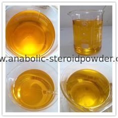 China Odorless Natural Anabolic Steroids 17 - Methyltestosterone 99% Raw Powder Tasteless supplier