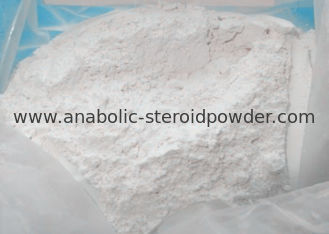 China Cutting Cycle Oral Legal Steroids , Strongest Oral Steroid Stanozolol Winstrol supplier