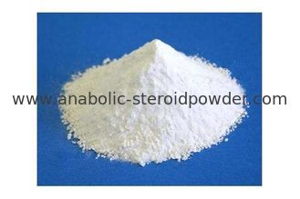 China Purity 99% Women Bodybuilding Steroids Ethinylestradiol High Efficiency CAS 57-63-6 supplier