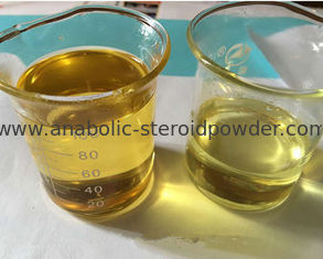 China Semi - Finished Injectable Mixed Steroid Oil Tri Tren 180 For Fast Muscle Growth and Lose Weight supplier