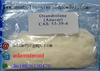 Good Quality Raw Steroid Powders & Oral Anabolic Steroids CAS 53-39-4 , Oxandrolone Anavar For Fat Loss on sale