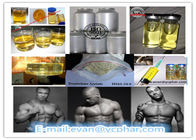 China Trenbolone Steroid Trenbolone Acetat Powder for Cutting/Bodybuilding  10161-34-9 company