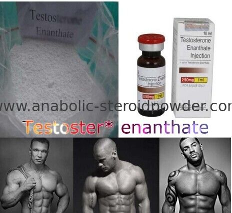steroide shop at