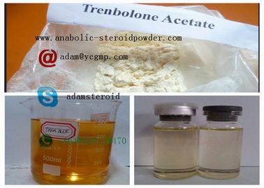 China Injectable Trenbolone Steroid Trenbolone Acetate distributor