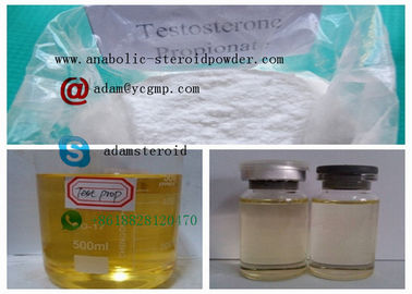 China Painless Pre Made Steroids Oils Testosterone Propionate 100 Mg For Bodybuilding distributor