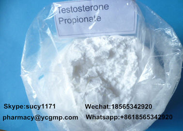 China Injectable Testosterone Steroids Testosterone Propionate 100 For Strength Gain distributor