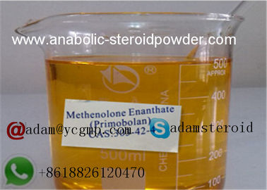 China Painness High Purity Methenolone Enanthate 100mg / ml For Bodybuilding Supplements distributor