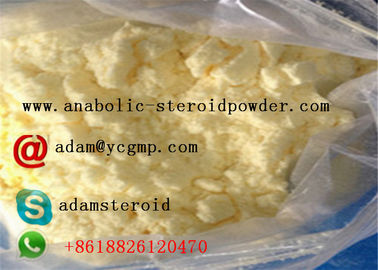 China Trenbolone Steroid Trenbolone Ethanate for Bodybuilding distributor