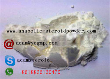 China No Side Effects SARMS Raw Powder Andarine LGD 4033 MK-2866 GW-501516 For Bodybuilding distributor