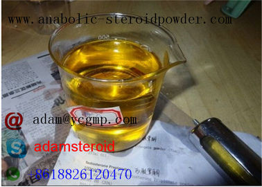China Safety Nandrolone Steroid Nandrolone Deca Durabolin / Legal Steroids For Muscle Mass  distributor