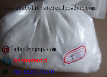 China Fat Burning Hormones T3 Na Liothyronine Sodium For Weight Loss 55-06-1 distributor