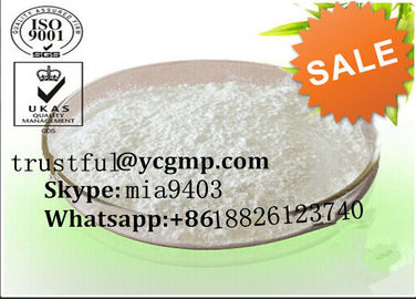 China Positive Fat Burning Hormones Rimonabant For Muscle Building 168273-06-1 distributor