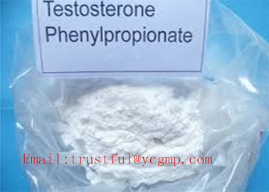 China Muscle Mass Steroid Testosterone Phenylpropionate For Male Enhancement 1255-49-8 distributor