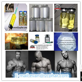 China Injectable Nandrolone Phenylpropionate Nandrolone Steroid Powder for Bodybuilders distributor