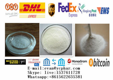 China Positive White crystalline Pure Synephrine Powder For wight  Loss 94-07-5 distributor