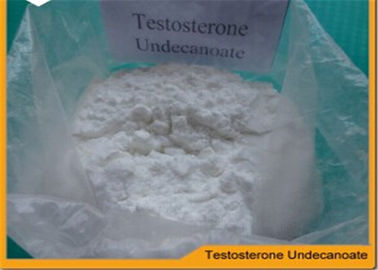 China Body building Testostero Undecanoate White crystalline powder Testosterone Steroid CAS 5949-44-0 distributor