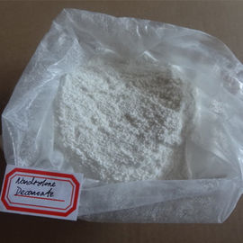 China DECA Powder Nandrolone Steroid 360 70 3 Immune System Beneficial For Muscle Enhancement distributor