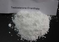 Enanthate Testosterone Steroid Test E Powder CAS 315-37-7 White Crystalline Appearance