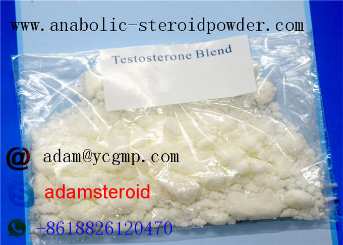 Mix Powder Testosterone Blend / Sustanon 250 For Legal Anabolic Supplements